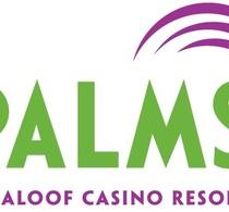 Thumbnail_palms_logo_color2